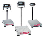 Shop Defender 5000™ Scales Now