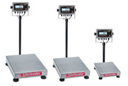 Shop Defender 5000 Xtreme Rectangular Scales Now