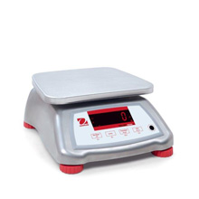 Shop Valor 2000 Compact Bench Scales Now