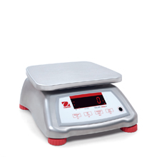 Shop Valor 4000 Compact Bench Scales Now