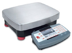 Shop Ranger 7000 Compact Bench Scales Now